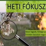 Hasznos növényvédelmi tanácsaink az Agronapló oldalán